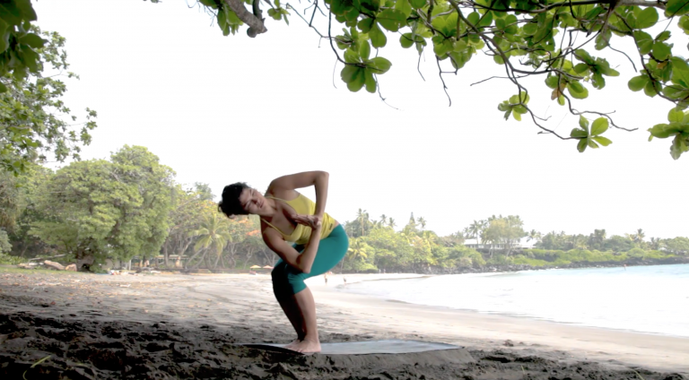 twisted flow vinyasa